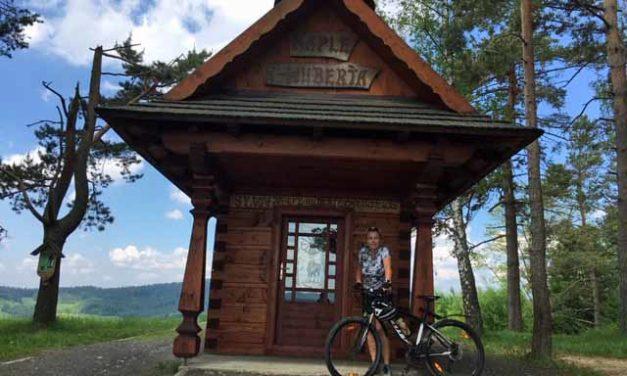 Petra Pšenicová se vrátila po pěti letech