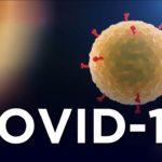 Pandemie koronaviru ovliňuje i VKV!