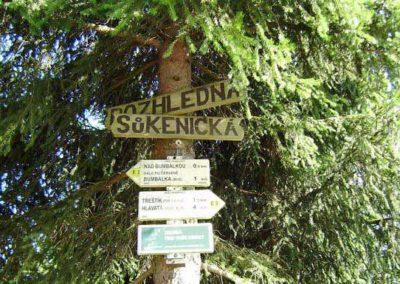 sukenicka_01_www.kudyznudy.cz