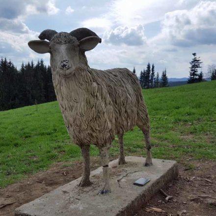 Pomník valašské ovci